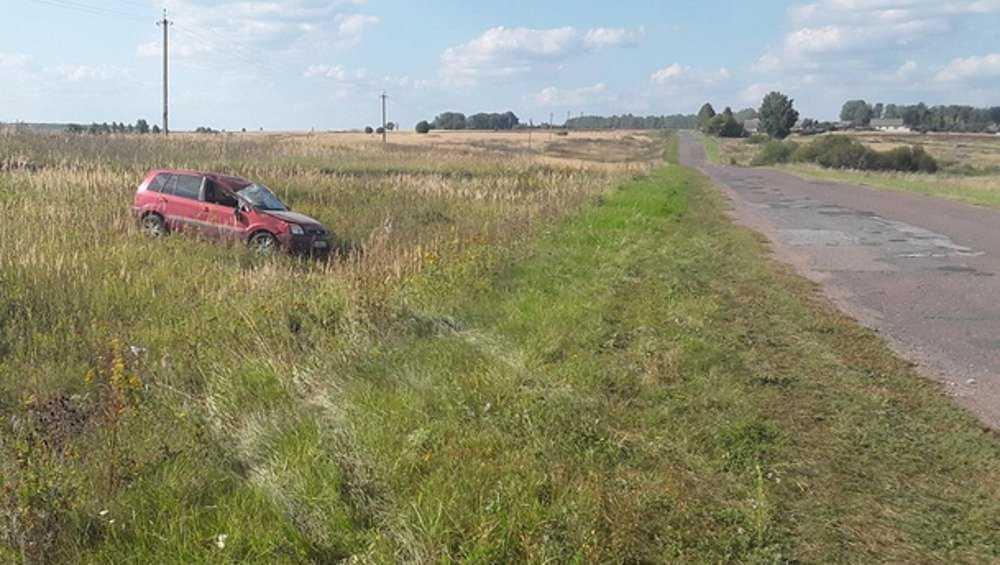 В Жирятинском районе автомобилистка совершила кульбит в кювете