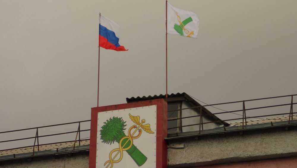 Перевернутый флаг Новозыбкова вызвал насмешки горожан
