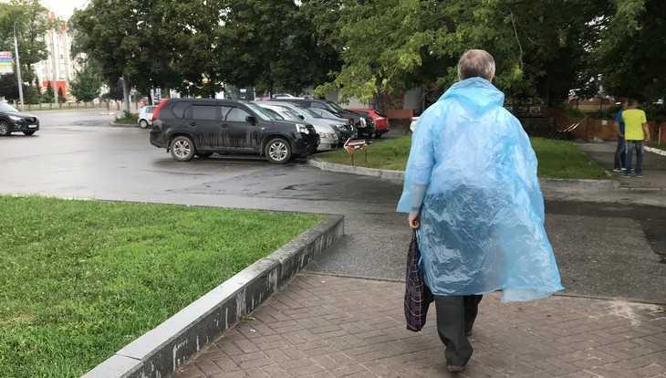 В Брянской области похолодает до 3 градусов тепла и пройдут дожди