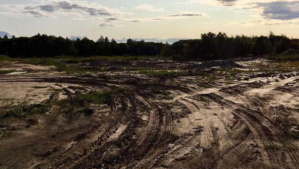 Брянские генералы песчаных карьеров могут загубить хотылевские луга