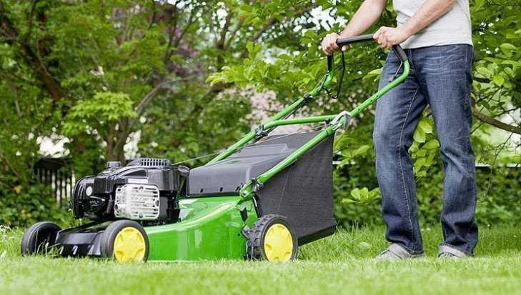 В Климове работник украл газонокосилку у хозяйки дома