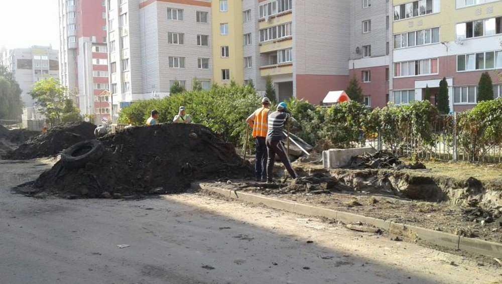 Брянских жителей неэлитного дома оставили без зеленого уголка во дворе