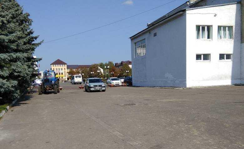 Жители Карачева одобрили отлов собак с помощью трактора