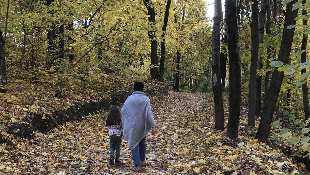 В Брянской области в выходные прогнозируют заморозки до 3 градусов