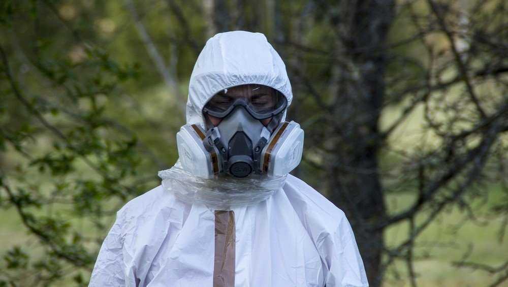Брянские ученые заявили об опасности использования радиационных земель