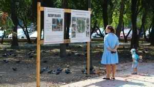 В Брянске в Круглом сквере уложили большую часть плитки и гранита