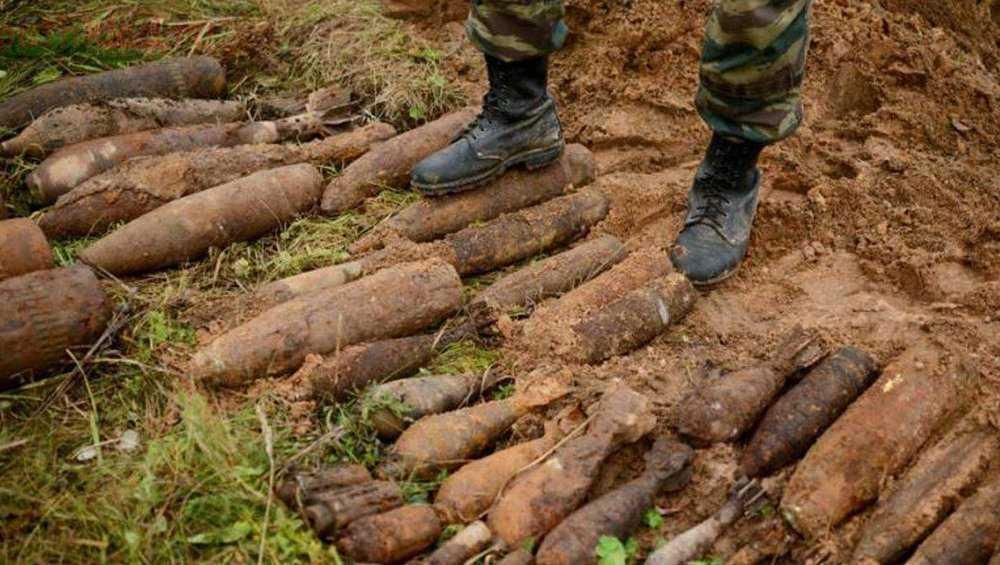 В лесу под Брянском нашли 151 снаряд времен войны