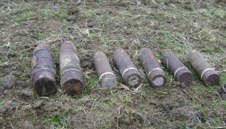 В двух районах Брянской области обнаружили три снаряда и мину