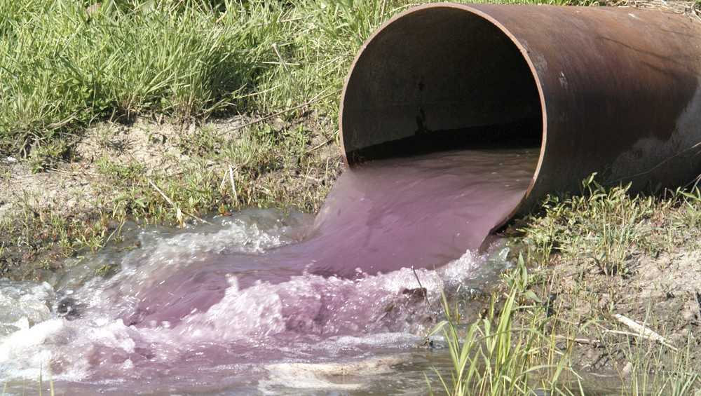 Почепский молокозавод уличили в сбросе нечистот в реку Судость