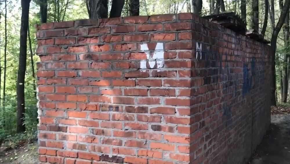 Брянский следопыт Коломейцев ринулся с проверкой в уличные туалеты