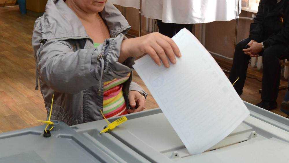Брянцам разрешили голосовать на выборах губернатора в течение трёх дней