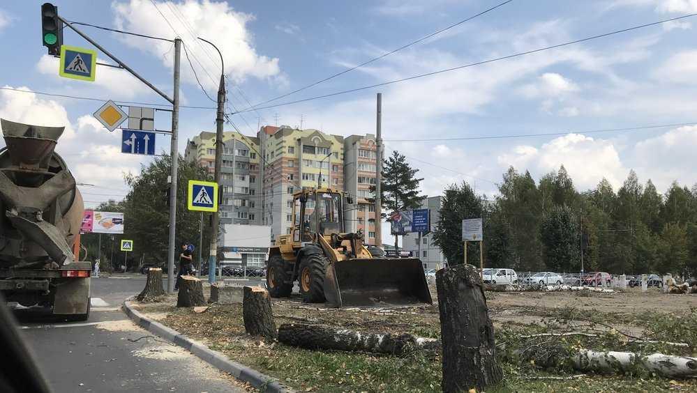 В Брянске начали спиливать деревья возле областного УГИБДД