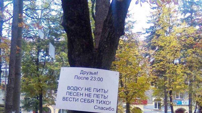 В Брянске с помощью деревьев горожан призвали не пить и не шуметь