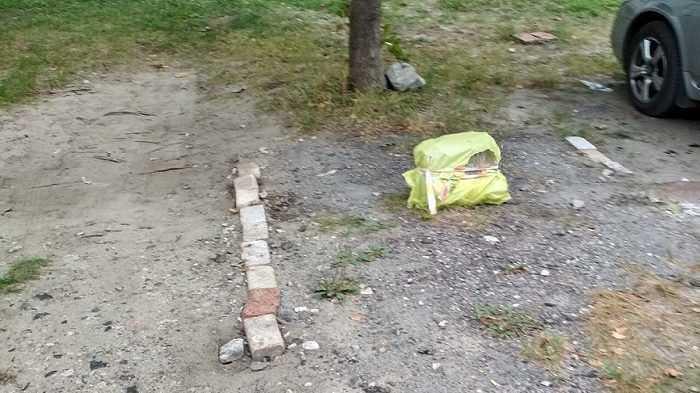 Брянские автовладельцы стали «минировать» стоянки во дворах