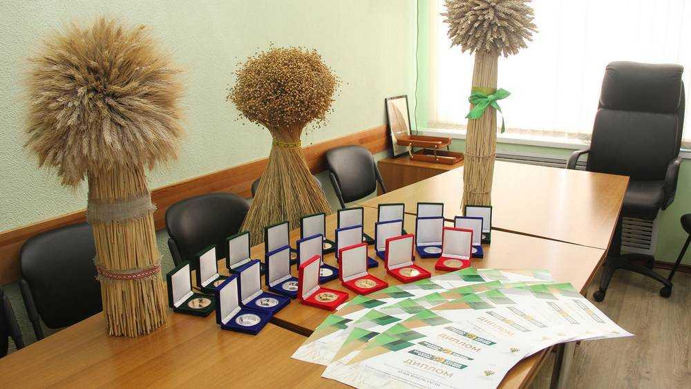 Брянская область получила Гран-при российской выставки «Золотая осень»