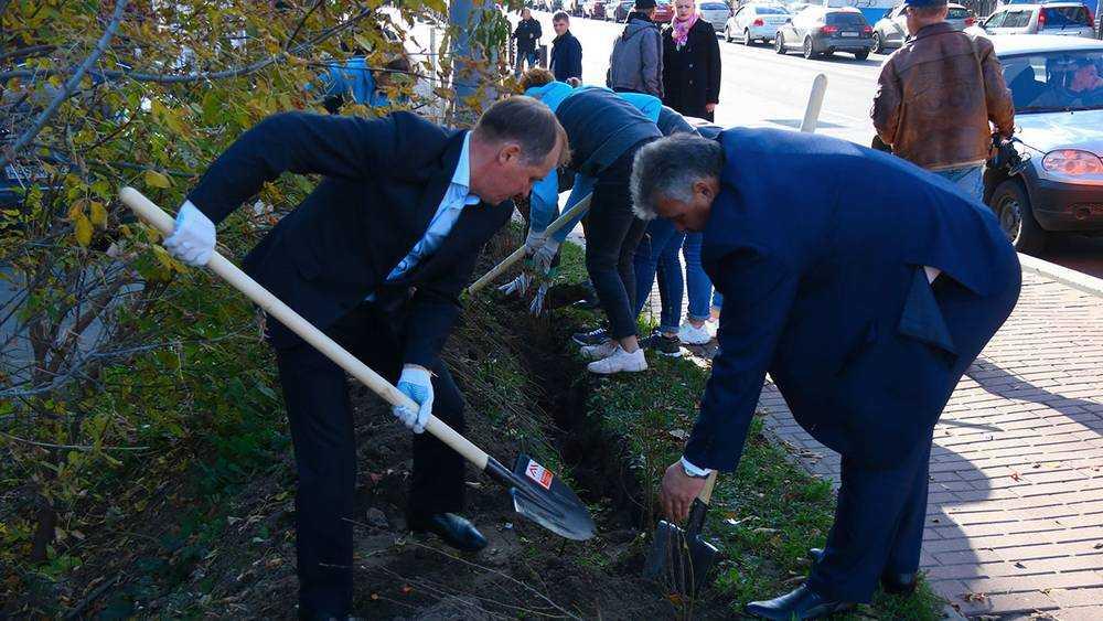 В Брянске чиновники и прокуроры посадили на дамбе кизильник