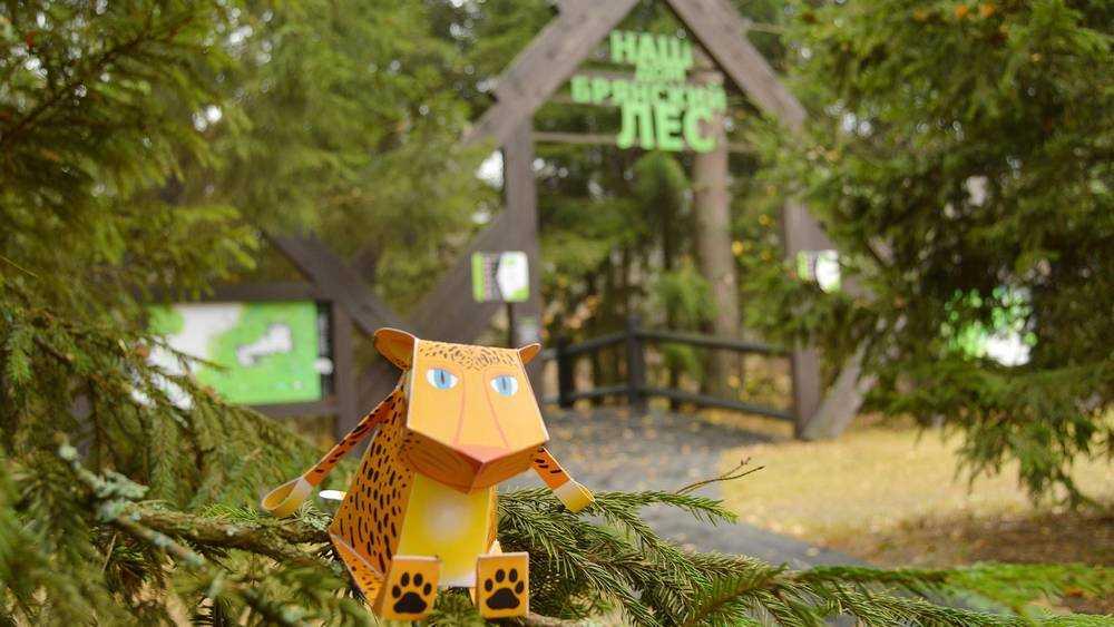Заповедник «Брянский лес» из-за коронавируса закрыли для туристов
