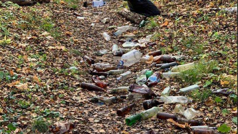 В Брянске выброшенные в роще бутылки истерически назвали катастрофой