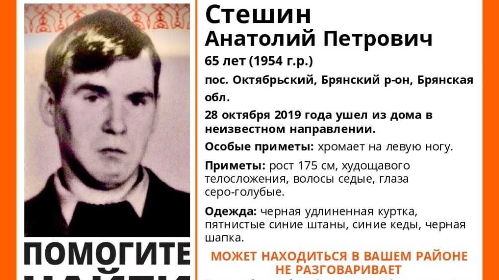 Брянцы рассказали о поисках пропавшего 28 октября Анатолия Стешина