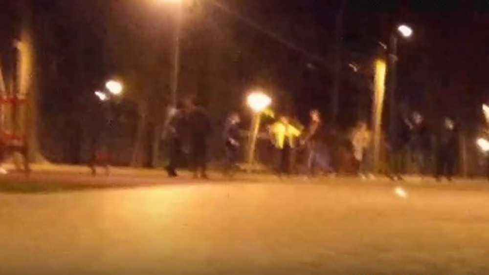 В бежицком парке на драку не отреагировала служба видеонаблюдения