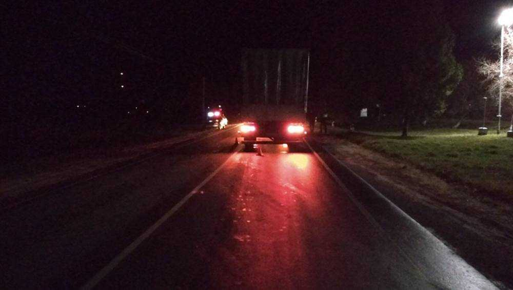 В Брянской области двух пьяных женщин сбили машины
