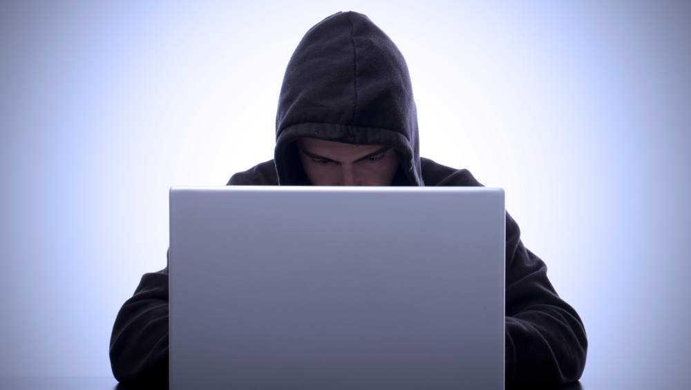 В Брянской области кибермошенники разбогатели на 550 млн рублей
