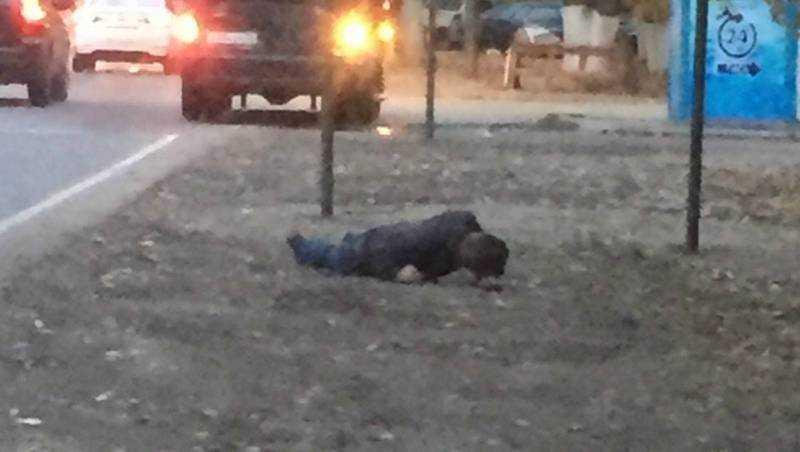 В Бежицком районе Брянска зверски избили мужчину