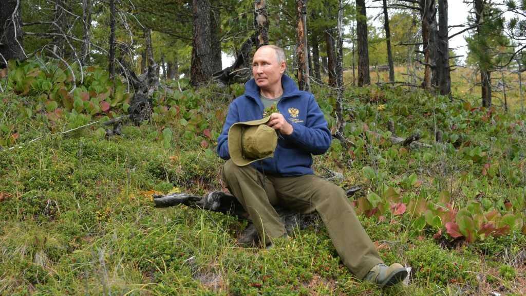 В США заинтересовались туалетом Путина