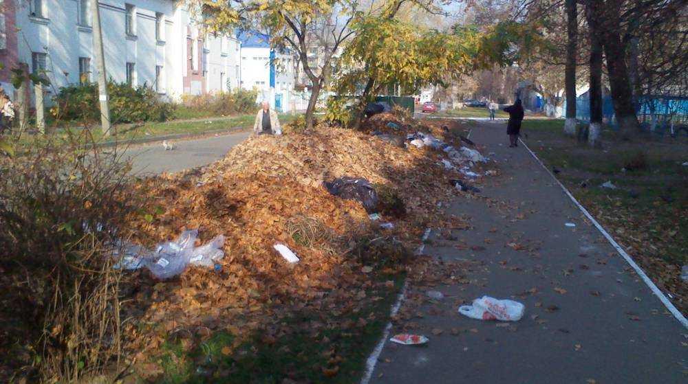 В Брянске подходы к больнице засыпали горами мусора