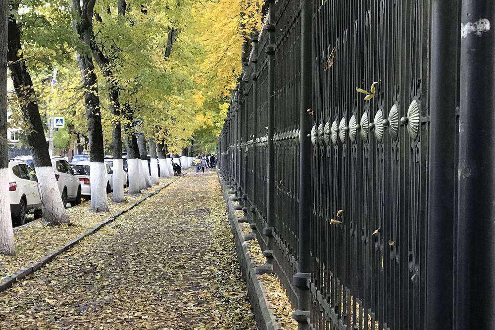 В Брянске на улице Горького отремонтируют дорогу возле парка и дендрария