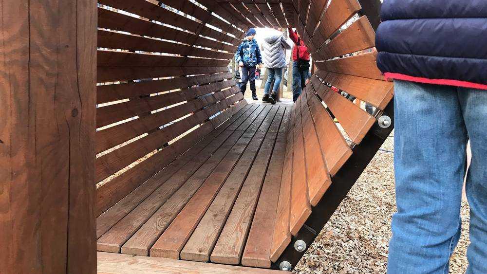 В Майском парке Брянска устранили последствия «атаки вандалов»