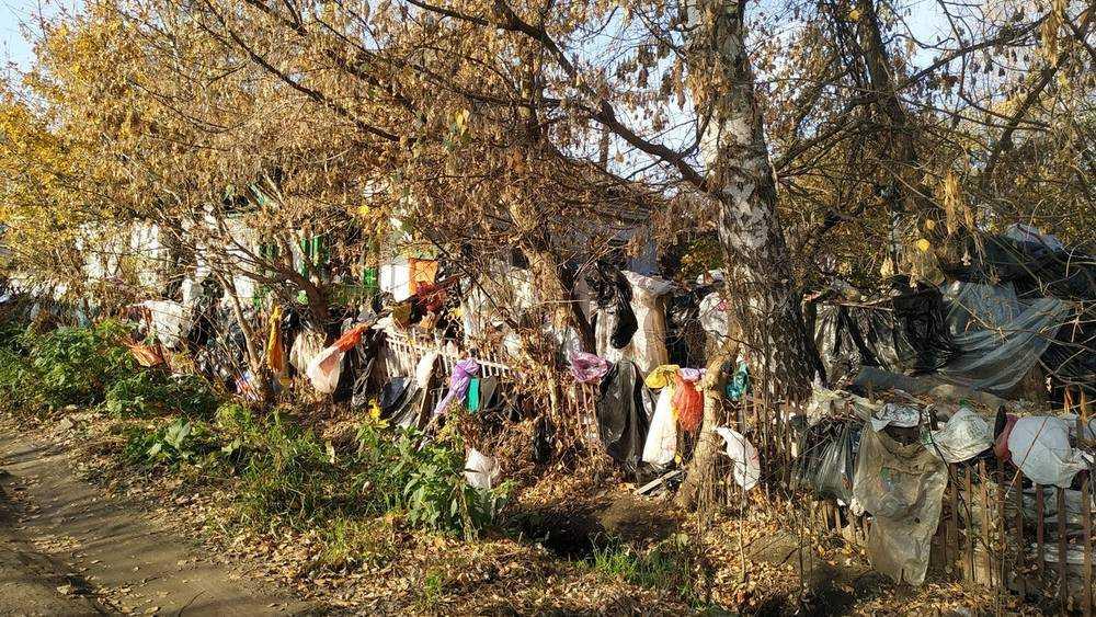 В Брянске нашли дом с жутким забором и крысами размером с кошку