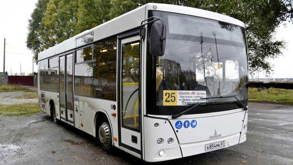 До конца года Брянск получит 102 новых автобуса