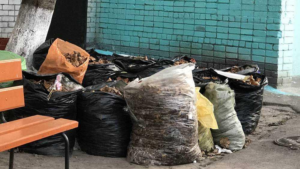 В Брянске «Чистую планету» обвинили в нарушении закона