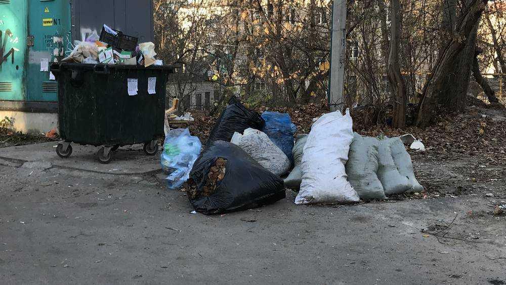 Во дворах Брянска собрали тысячи мешков с гниющей листвой