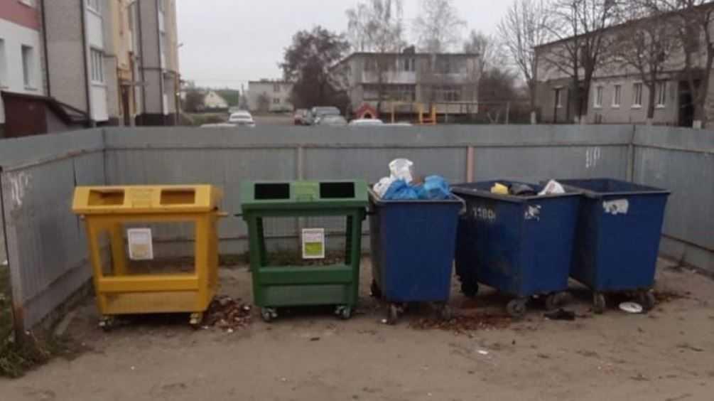 В Брянске «Чистую планету» обвинили в попытках очернить конкурента