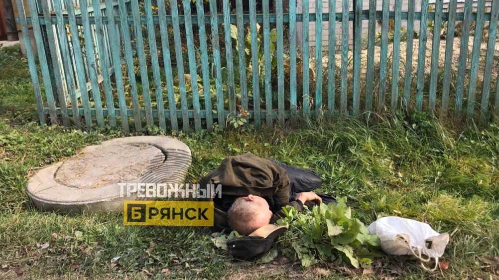 В Брянске лежавший у забора пьяница обругал помогавших ему прохожих