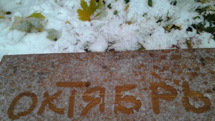 В Брянскую область 2 октября вернётся 20-градусное тепло
