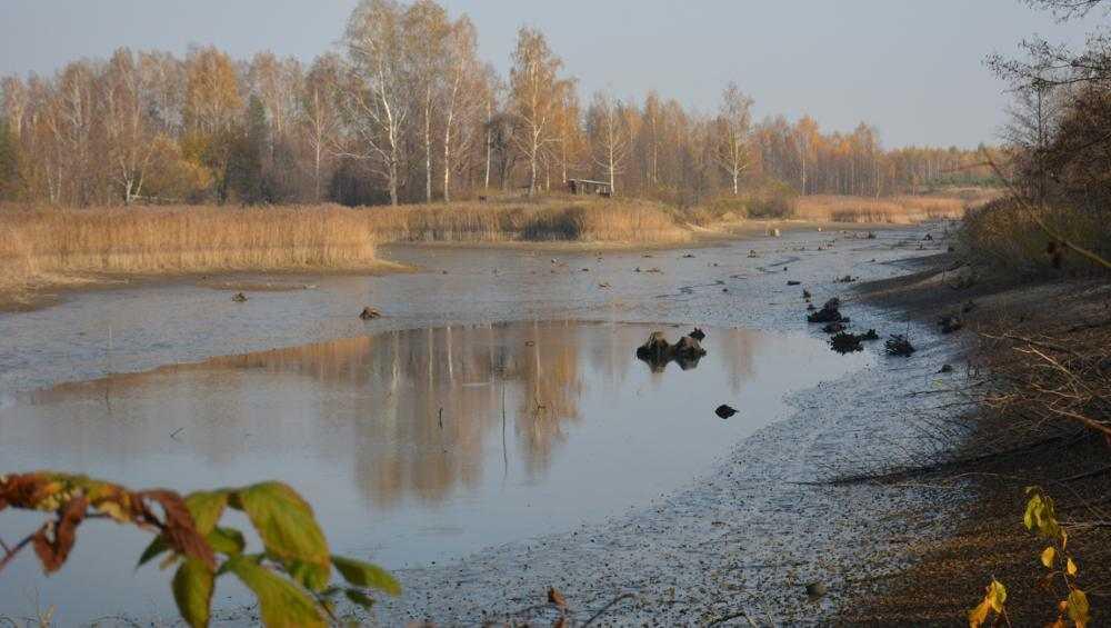 На грани исчезновения находится озеро под Новозыбковом