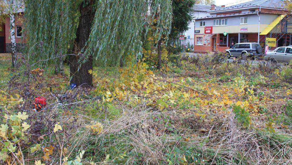 Под Брянском в Путевке разобьют новый парк