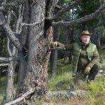 Брянский губернатор поздравил президента Владимира Путина с 67-летием