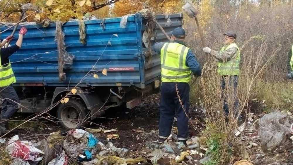 В Сельцо чиновников заставили очистить от свалок зеленую зону