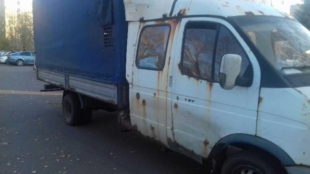 В Брянском районе скотоводы попались при перевозке бесхозных 35 телят