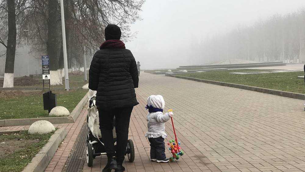 Брянскую область в четверг накроет туман