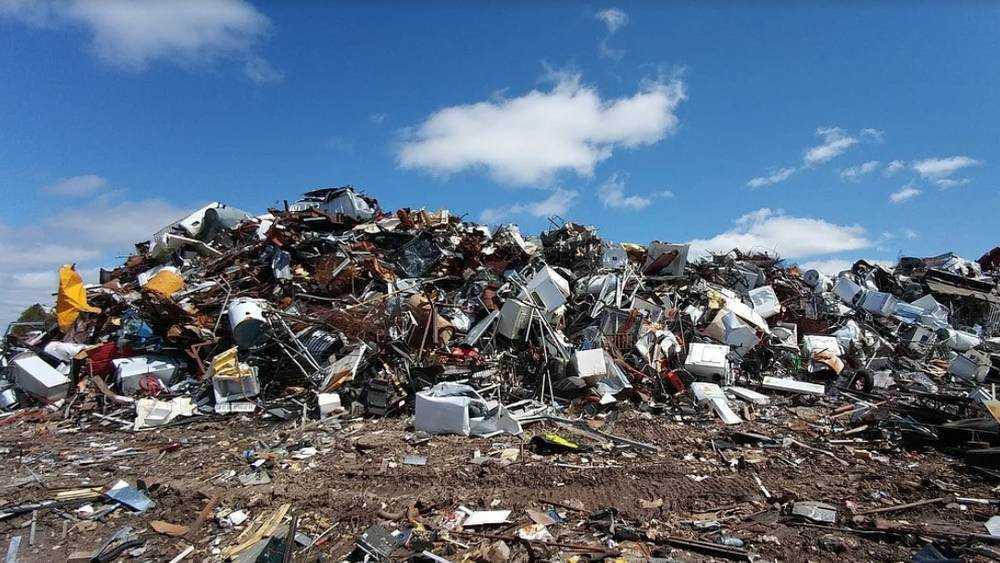 Глава Минприроды заявил о мусорной беде в брянской Жуковке
