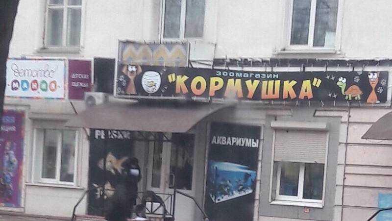 В Брянске на улице Пушкина ограбили зоомагазин