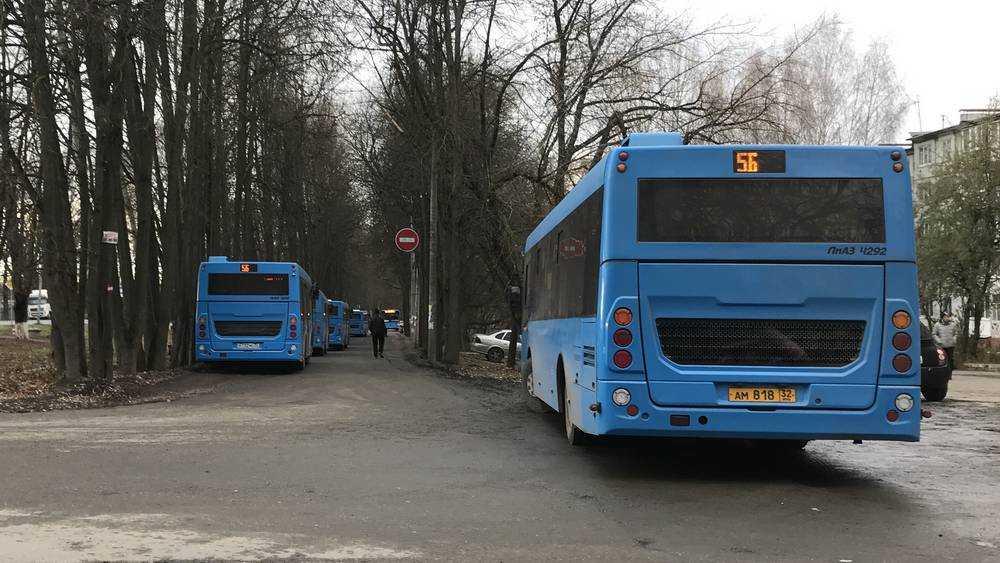 Упавшая в автобусе брянская пассажирка отсудила компенсацию