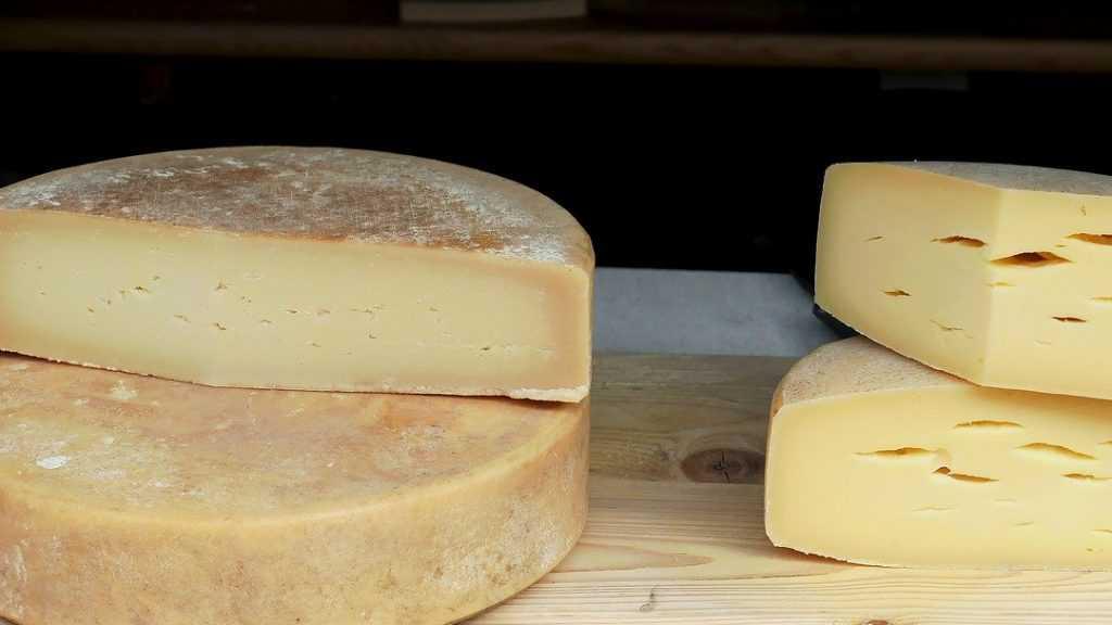 Производителей брянского сыра обвинили в фальсификации