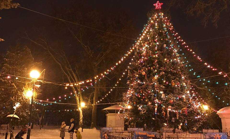 Главную елку Брянска установят в новом фонтане Круглого сквера