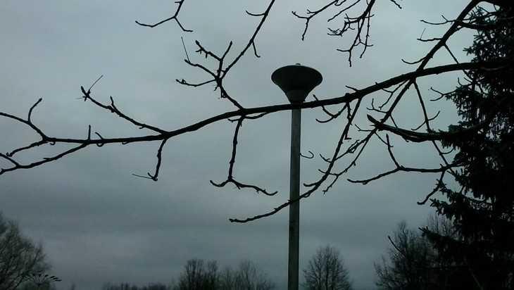 У жителей Брянска начались галлюцинации из-за уличных фонарей